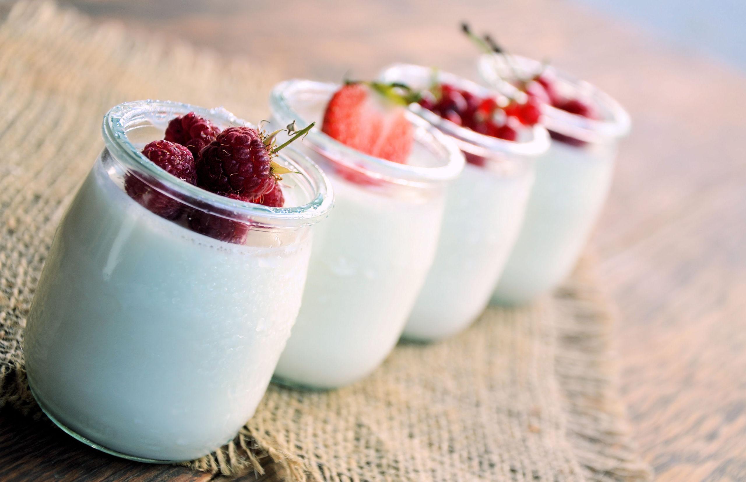dieta probiótica